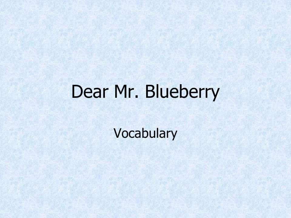 Dear Mr. Blueberry Vocabulary