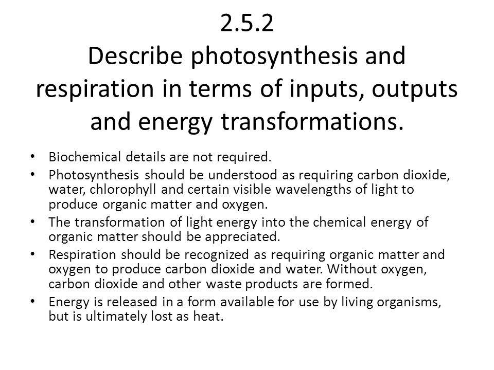 2.5.2 Describe photosynthesis and respiration in terms of inputs, outputs and energy transformations.