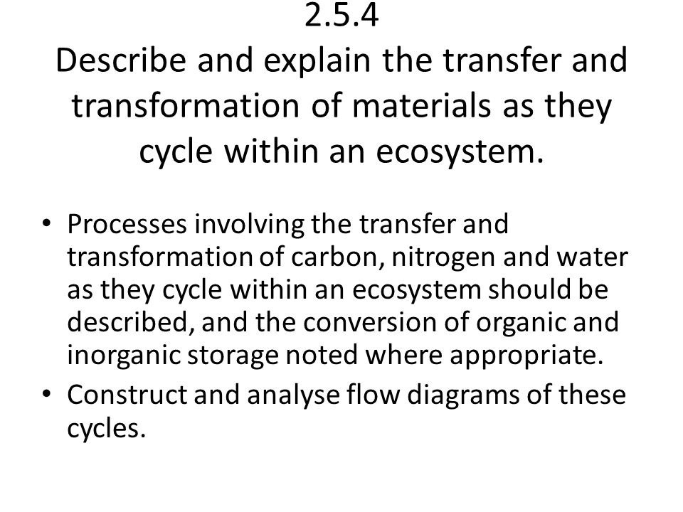 2.5.4 Describe and explain the transfer and transformation of materials as they cycle within an ecosystem.
