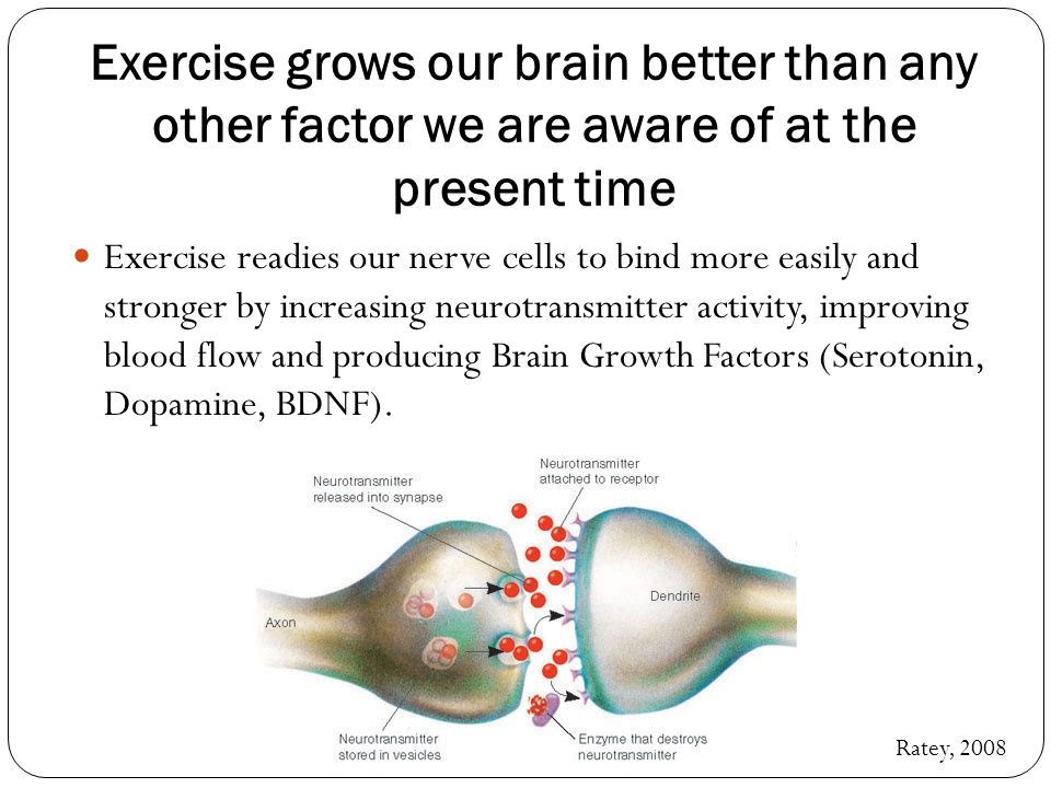 Exercise grows our brain better than any other factor we are aware of at the present time