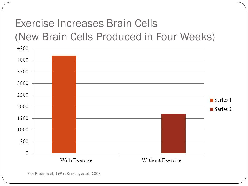 Exercise Increases Brain Cells (New Brain Cells Produced in Four Weeks)