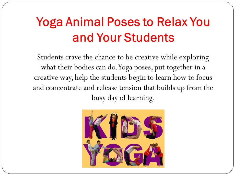 Yoga Animal Poses to Relax You and Your Students