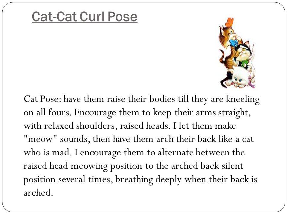 Cat-Cat Curl Pose