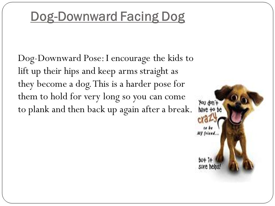 Dog-Downward Facing Dog