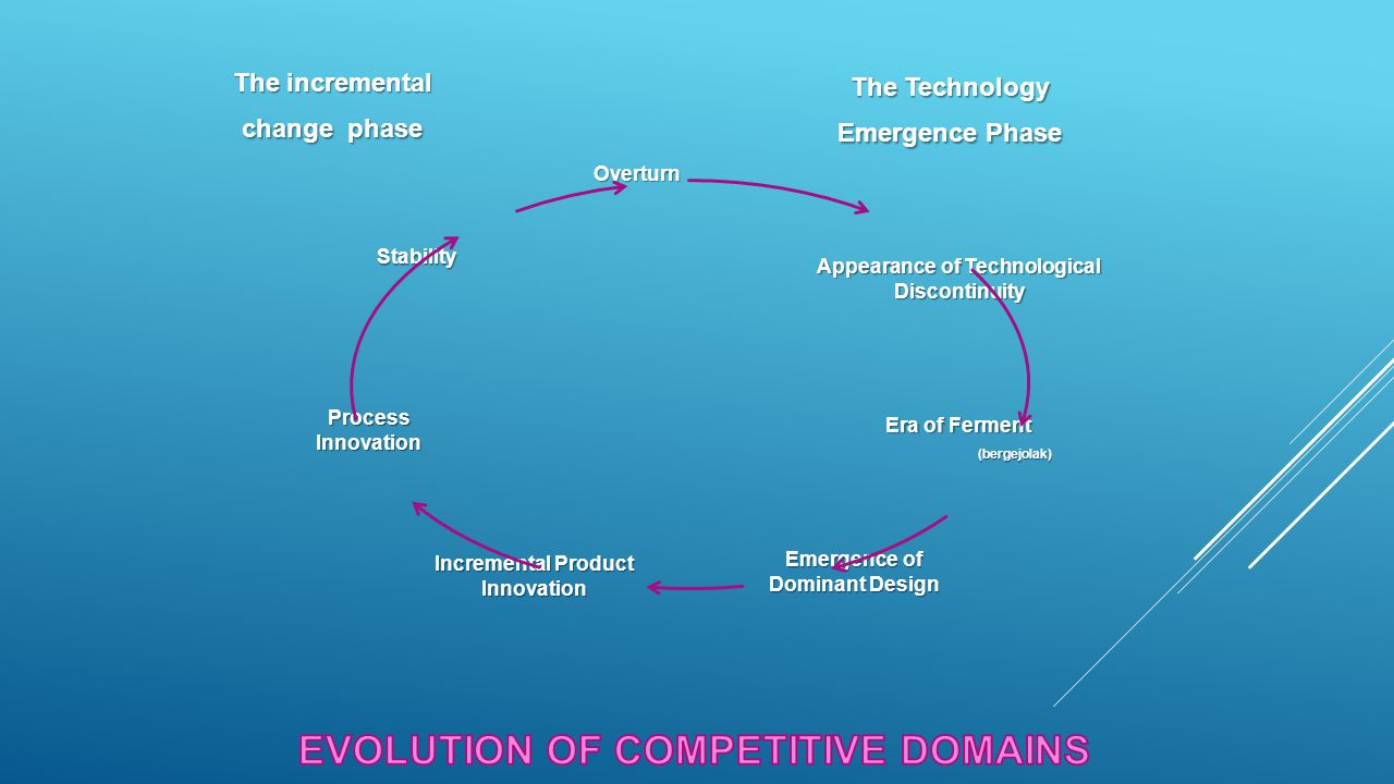 EVOLUTION OF COMPETITIVE DOMAINS