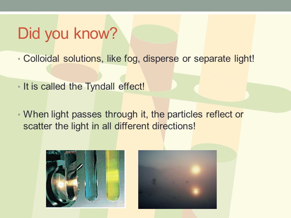 Did you know Colloidal solutions, like fog, disperse or separate light! It is called the Tyndall effect!