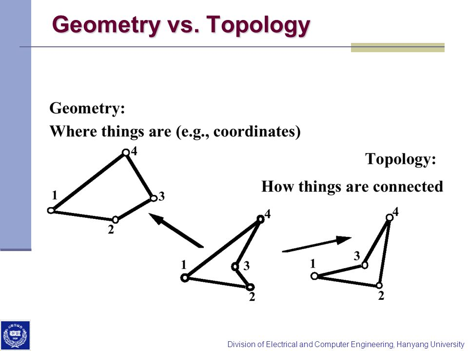 Geometry vs. Topology