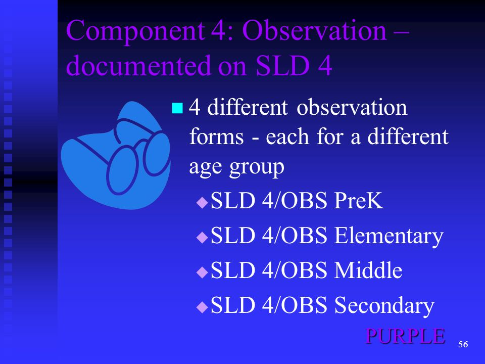 Component 4: Observation – documented on SLD 4