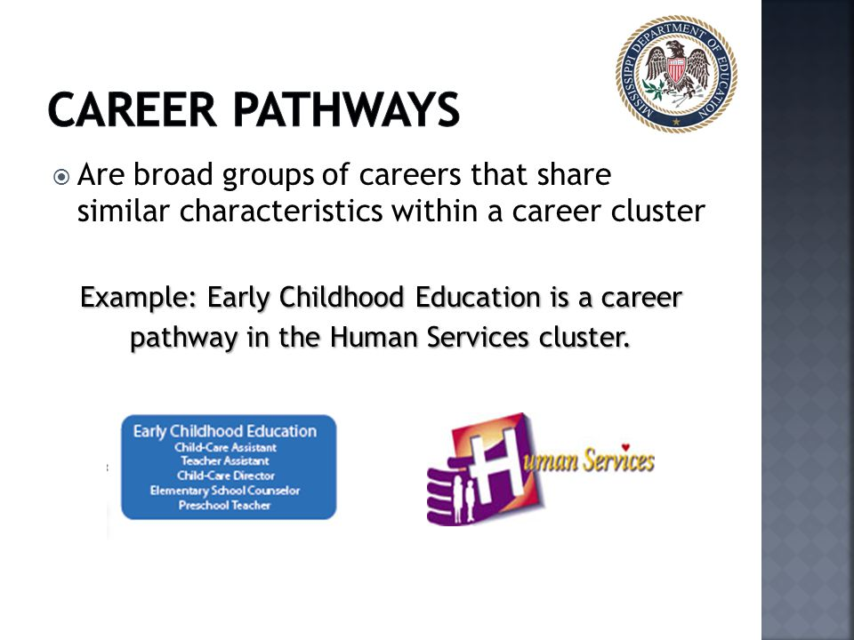 Career pathwayS Are broad groups of careers that share similar characteristics within a career cluster.