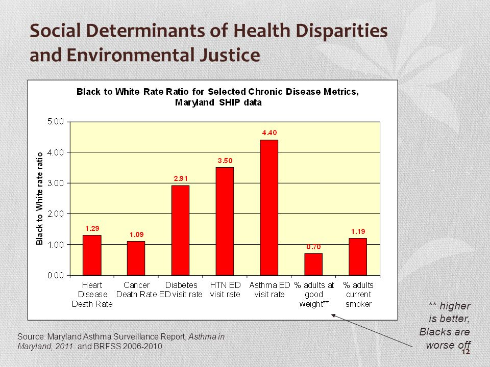 Social Determinants of Health Disparities and Environmental Justice