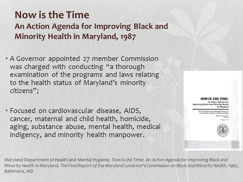 Now is the Time An Action Agenda for Improving Black and Minority Health in Maryland, 1987