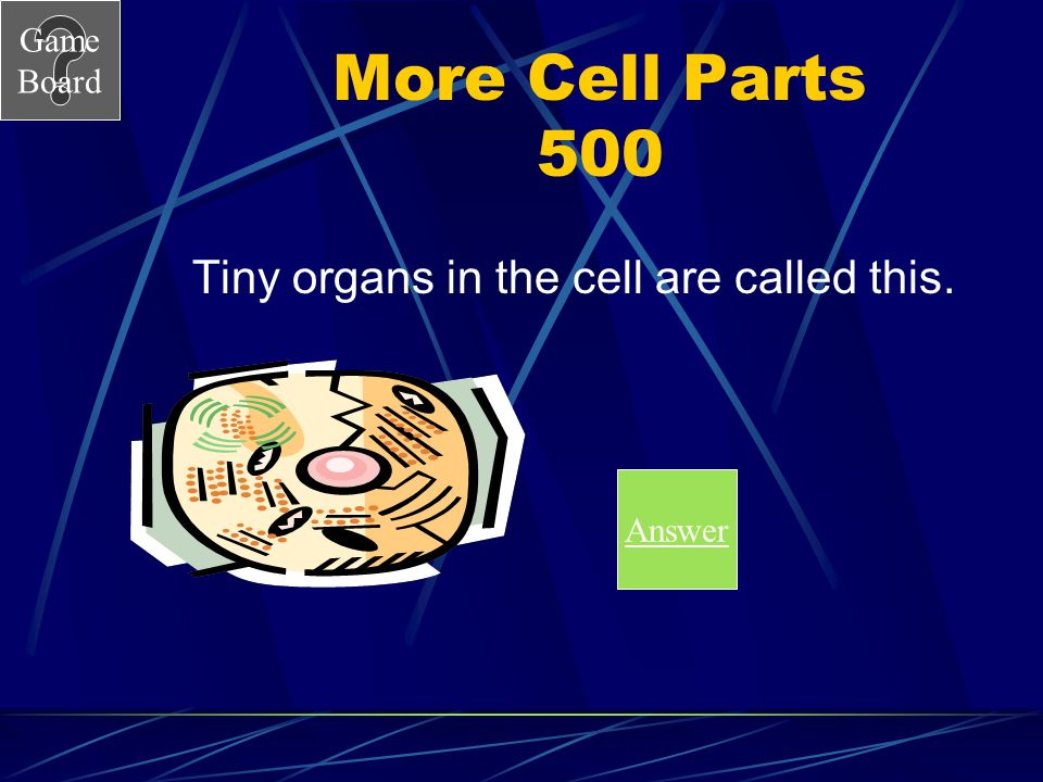 Tiny organs in the cell are called this.