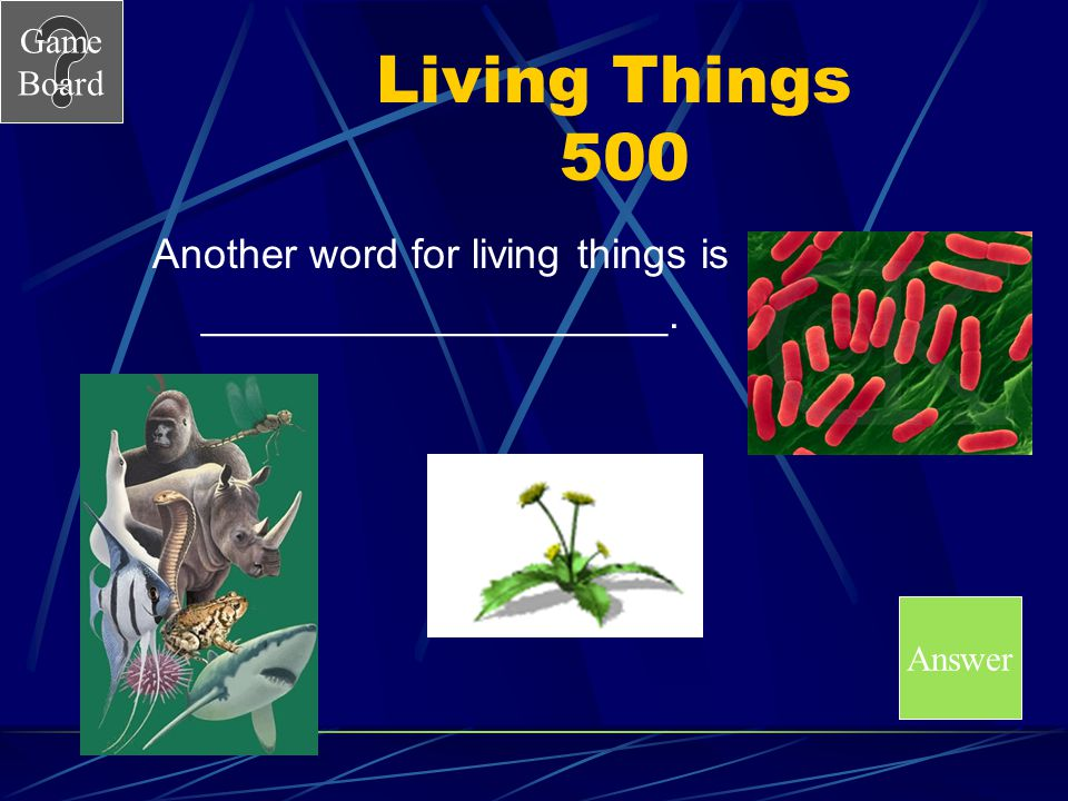 Living Things 500 Another word for living things is
