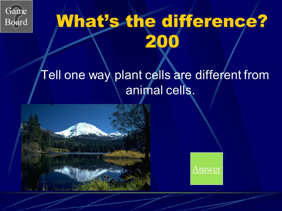 Tell one way plant cells are different from animal cells.