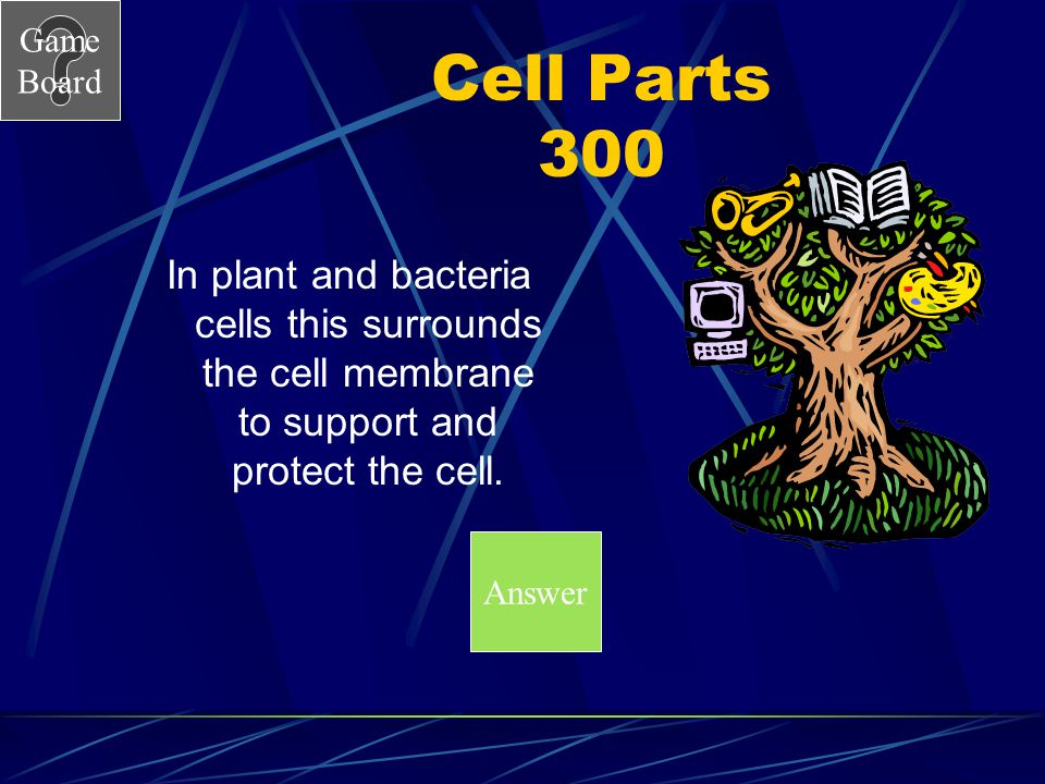 Cell Parts 300 In plant and bacteria cells this surrounds the cell membrane to support and protect the cell.