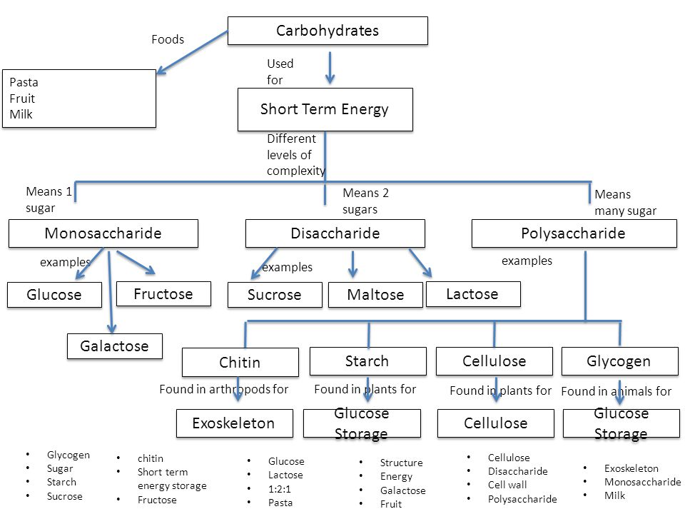 Carbohydrates Short Term Energy Monosaccharide Disaccharide