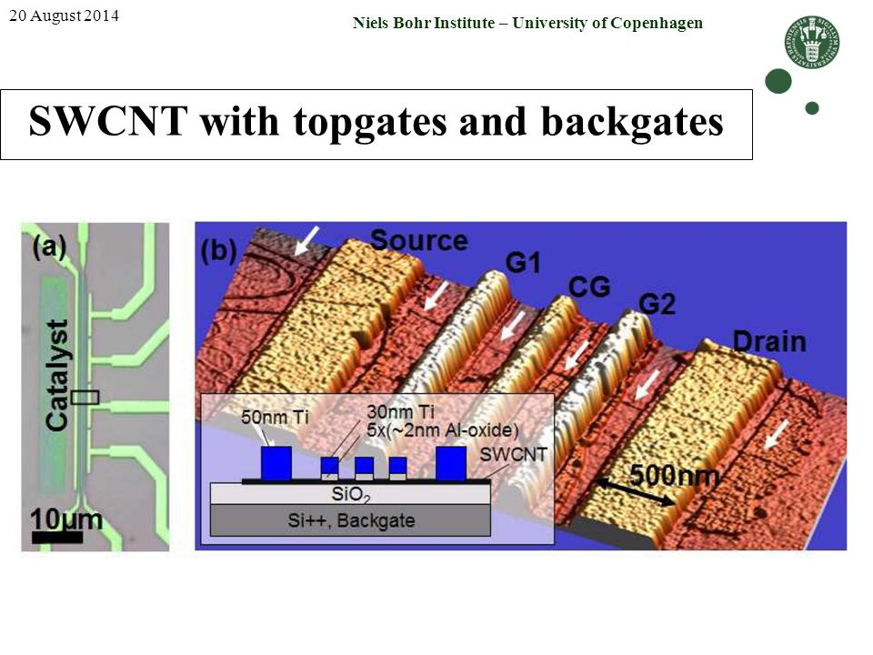 SWCNT with topgates and backgates