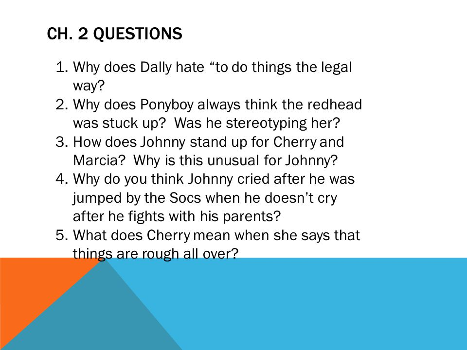 Ch. 2 Questions Why does Dally hate to do things the legal way