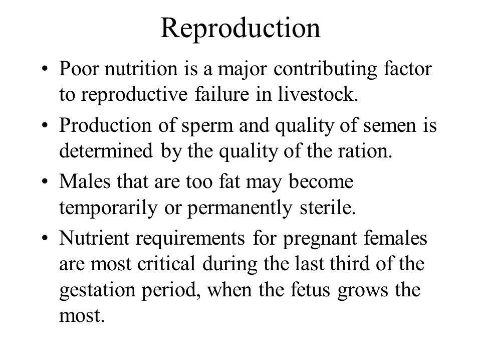 Reproduction Poor nutrition is a major contributing factor to reproductive failure in livestock.