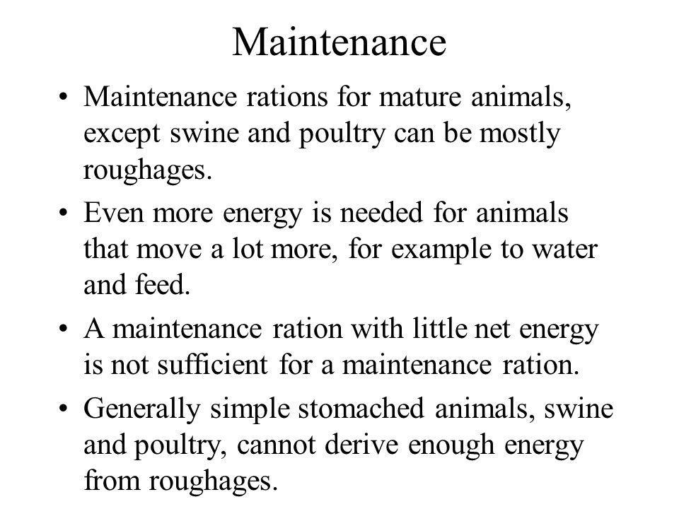 Maintenance Maintenance rations for mature animals, except swine and poultry can be mostly roughages.