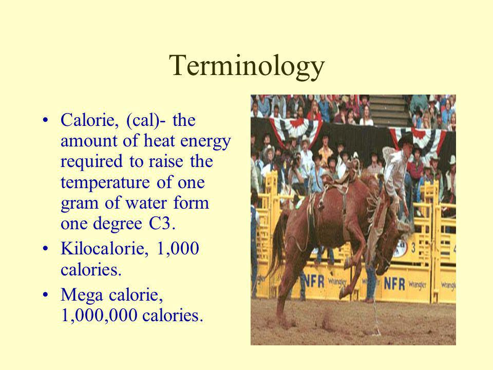 Terminology Calorie, (cal)- the amount of heat energy required to raise the temperature of one gram of water form one degree C3.