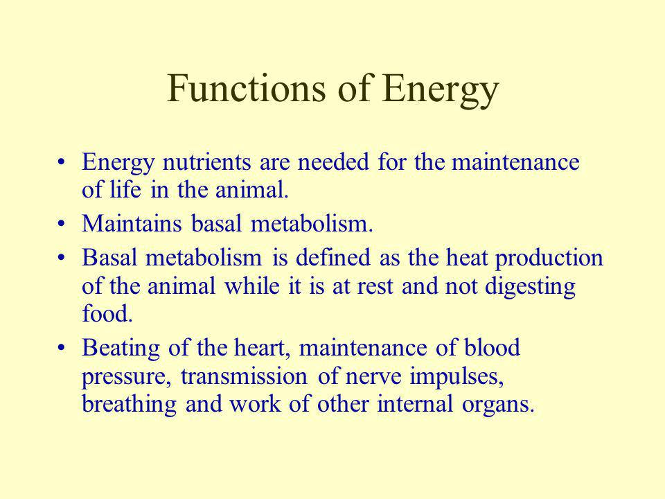 Functions of Energy Energy nutrients are needed for the maintenance of life in the animal. Maintains basal metabolism.