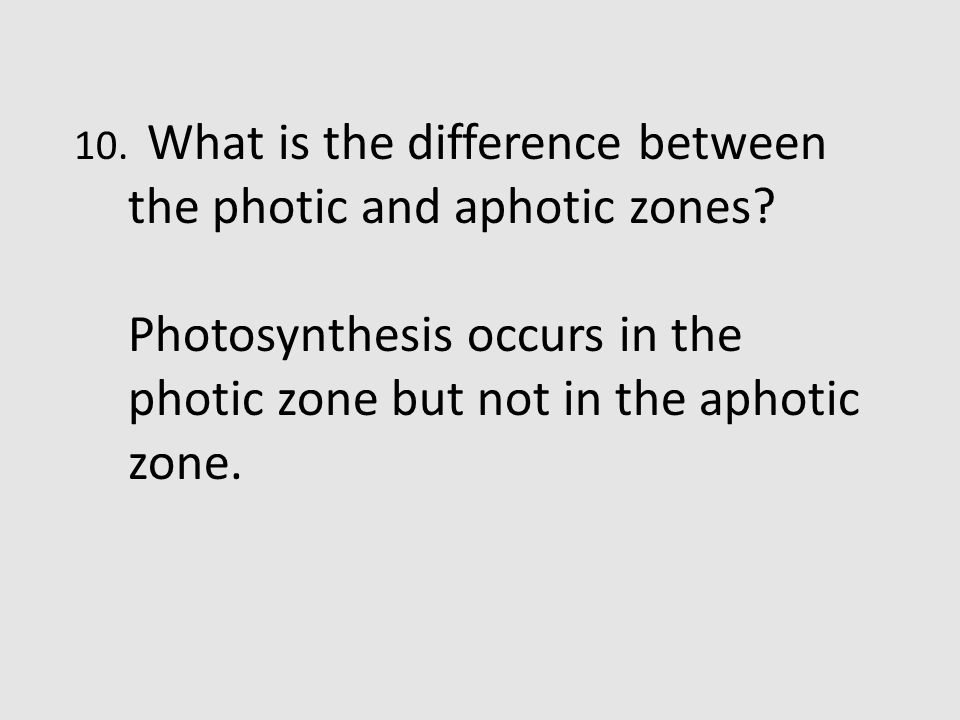 Photosynthesis occurs in the photic zone but not in the aphotic zone.