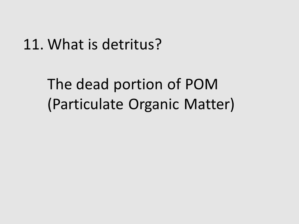 What is detritus The dead portion of POM (Particulate Organic Matter)