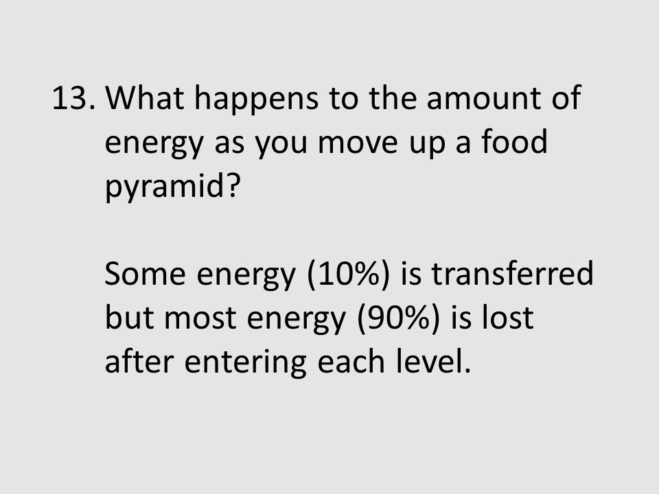 What happens to the amount of energy as you move up a food pyramid