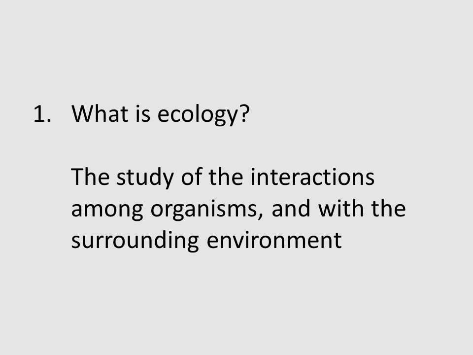 What is ecology.