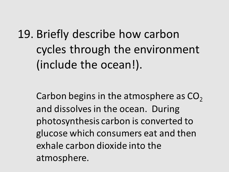 Briefly describe how carbon cycles through the environment (include the ocean!).