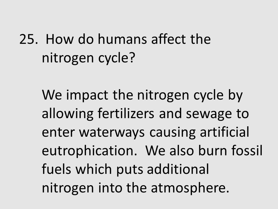 25. How do humans affect the nitrogen cycle