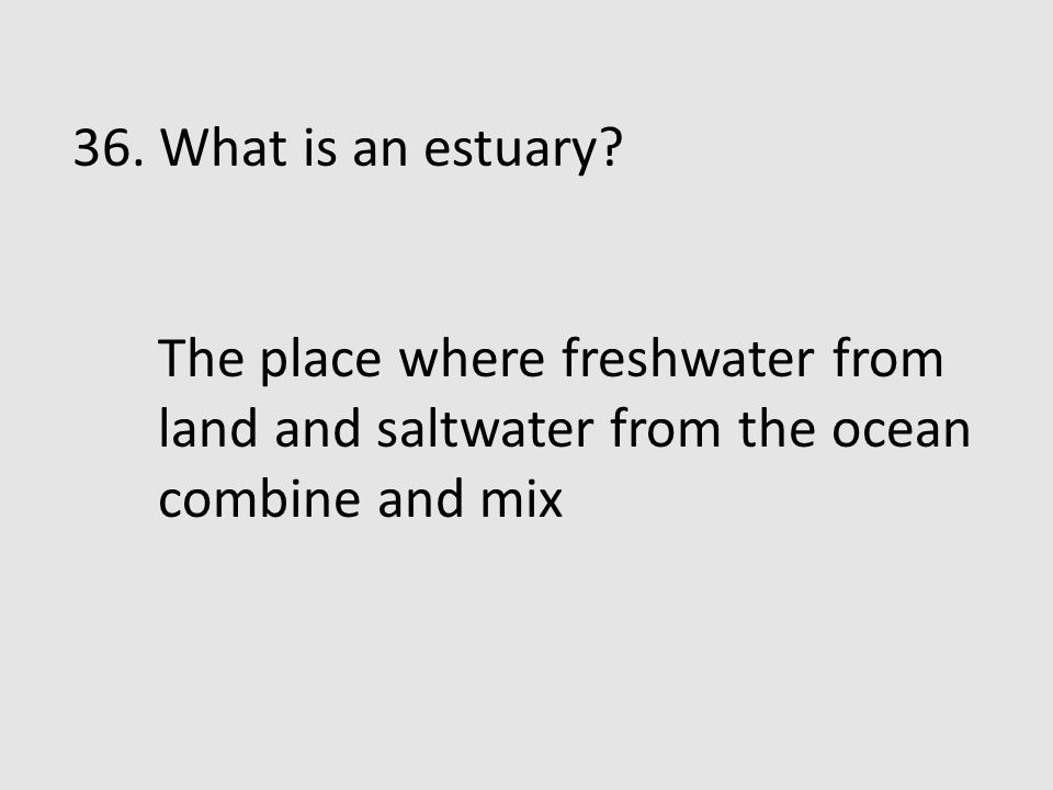 36. What is an estuary.
