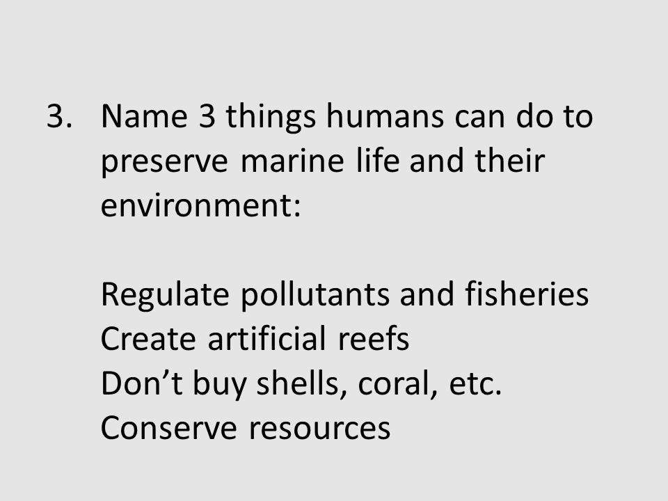 Name 3 things humans can do to preserve marine life and their environment: