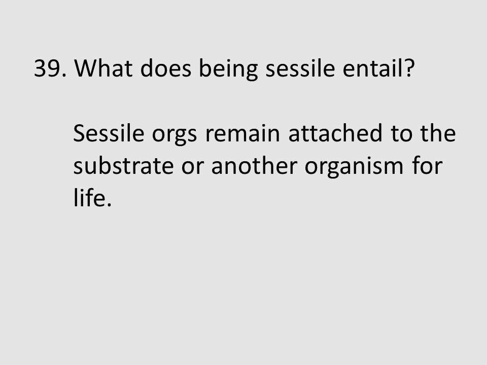 39. What does being sessile entail