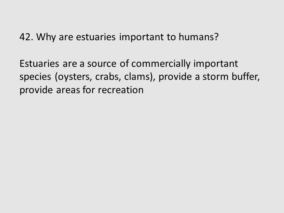 42. Why are estuaries important to humans