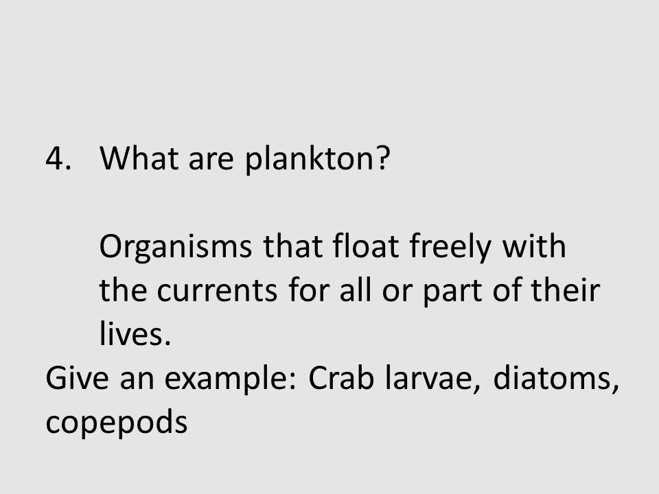 What are plankton. Organisms that float freely with the currents for all or part of their lives.