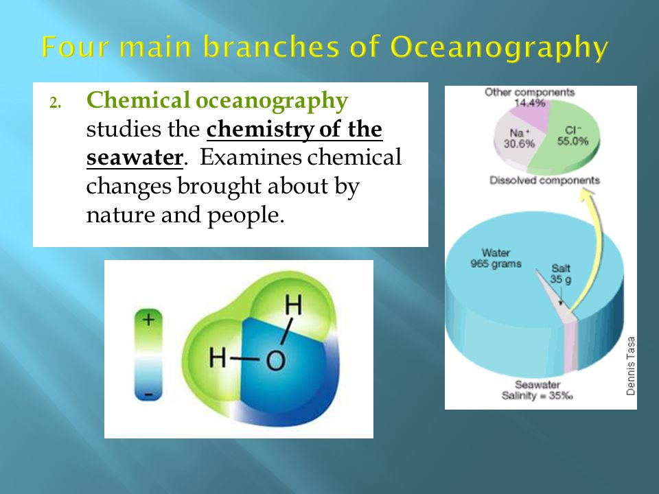 Four main branches of Oceanography