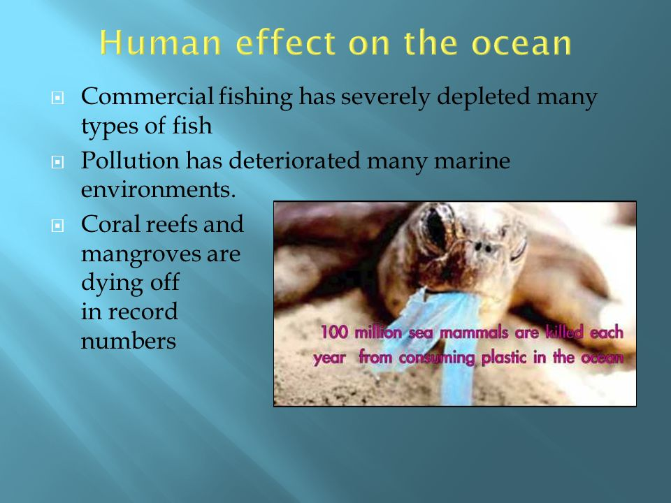Human effect on the ocean