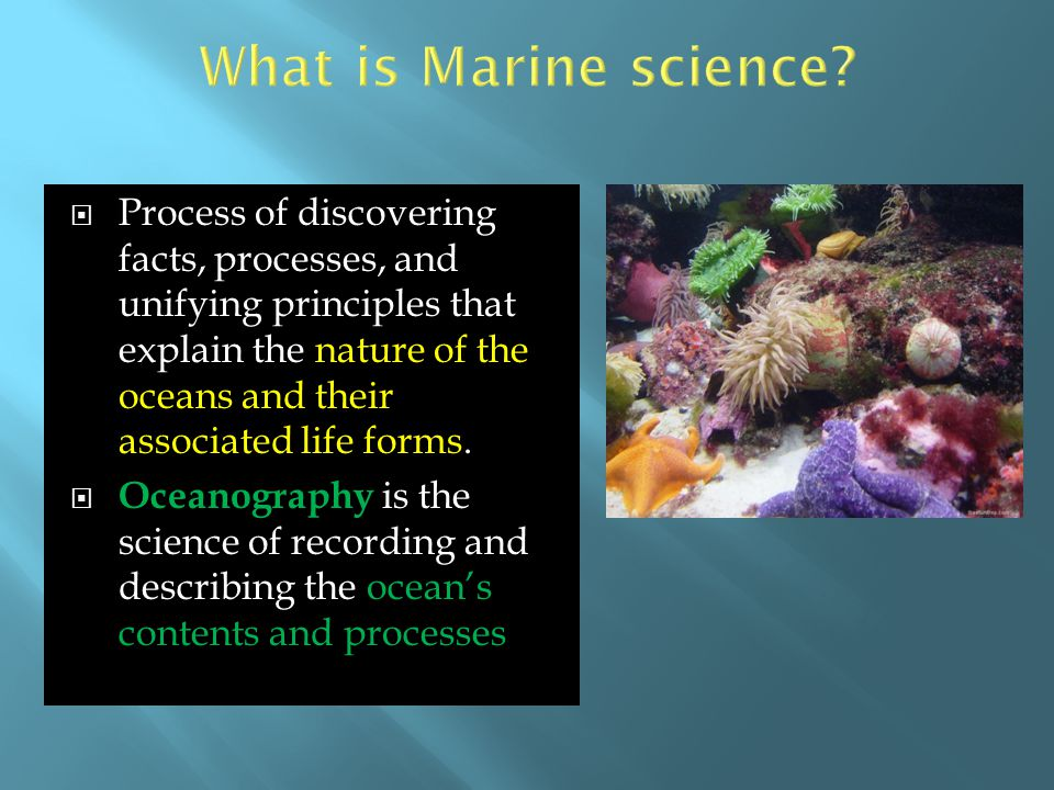 What is Marine science