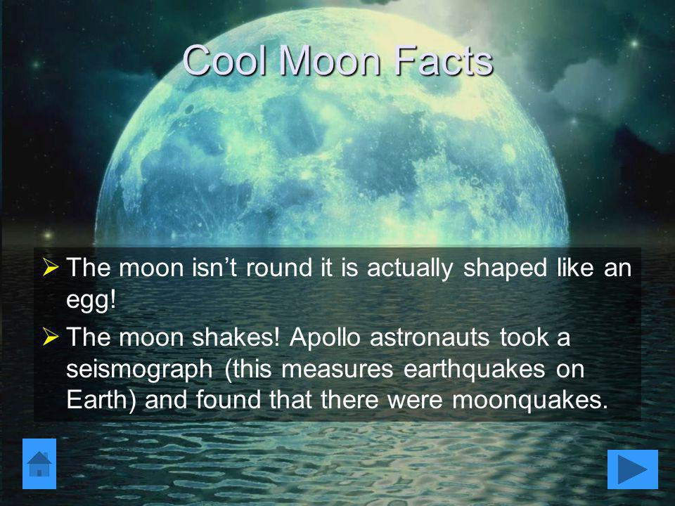 Cool Moon Facts The moon isn't round it is actually shaped like an egg!