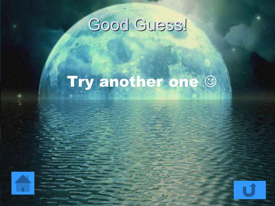 Good Guess! Try another one 