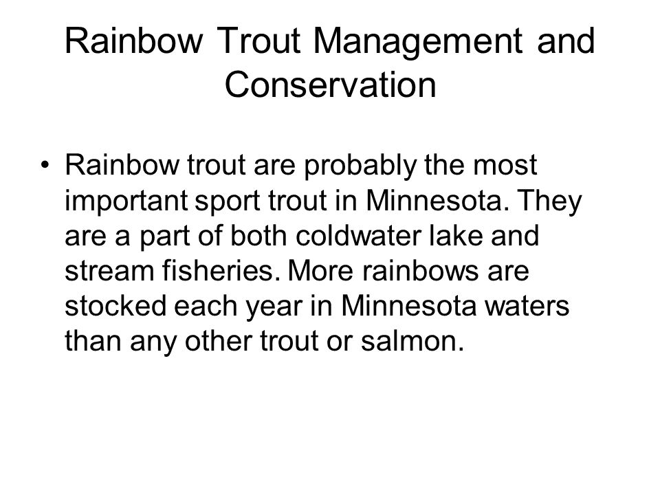 Rainbow Trout Management and Conservation