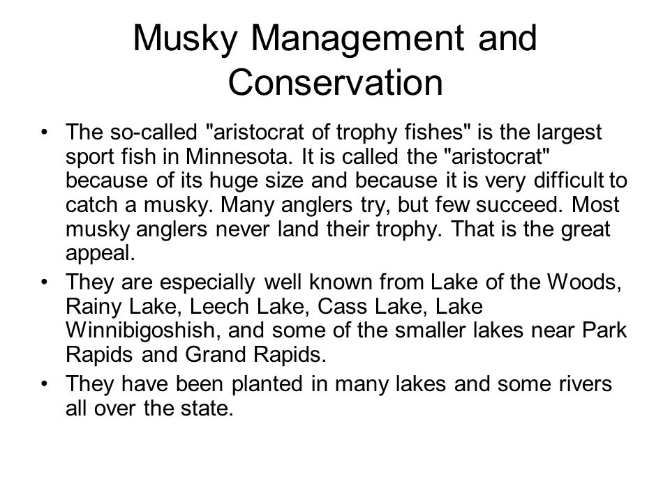 Musky Management and Conservation