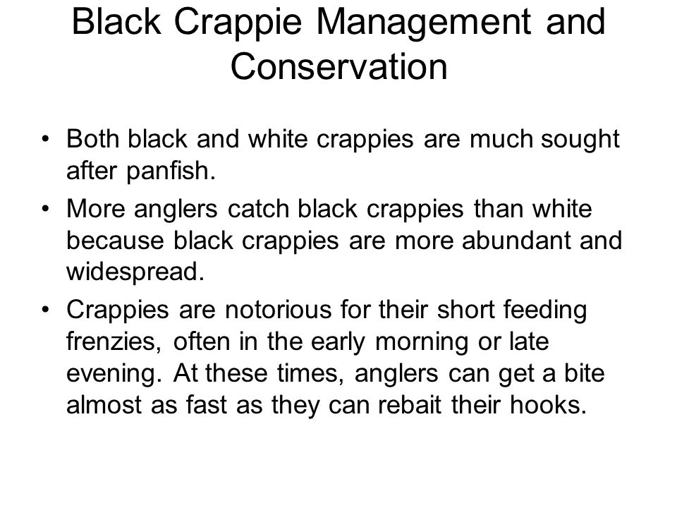 Black Crappie Management and Conservation