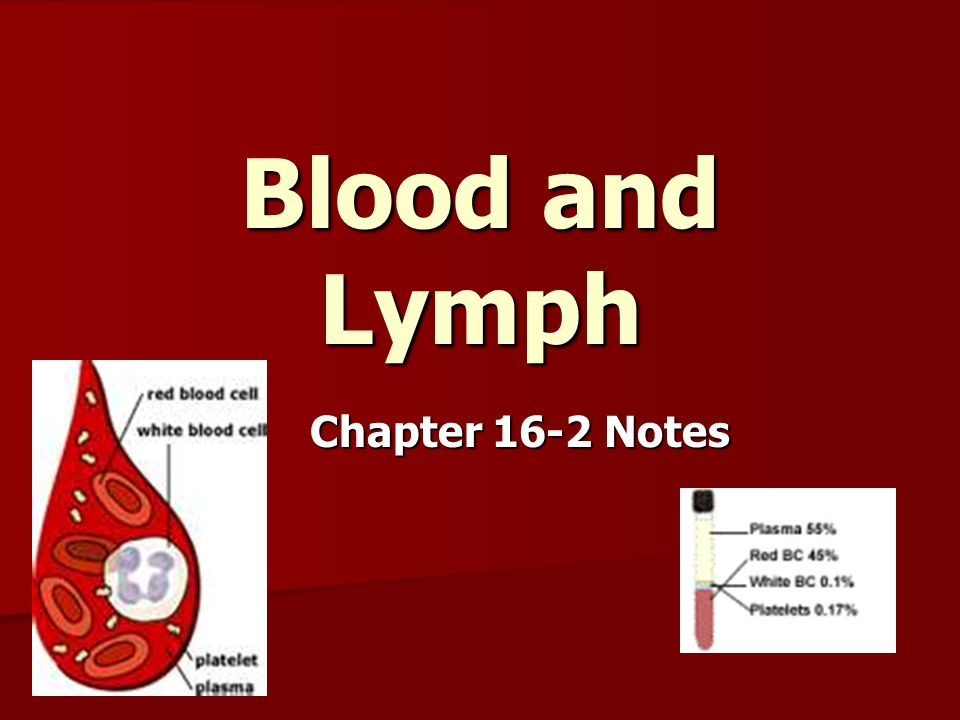 Blood and Lymph Chapter 16-2 Notes
