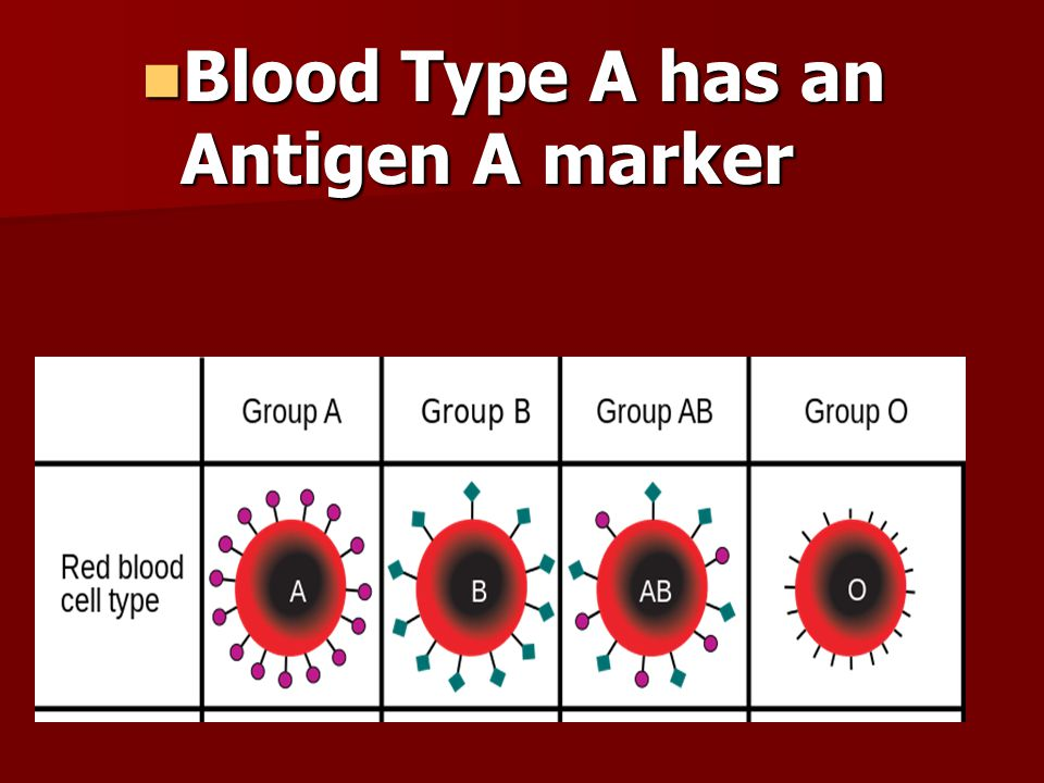 Blood Type A has an Antigen A marker