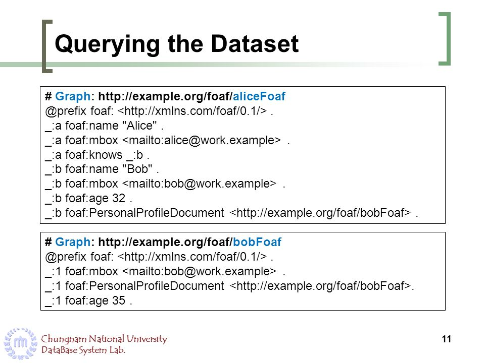 Querying the Dataset