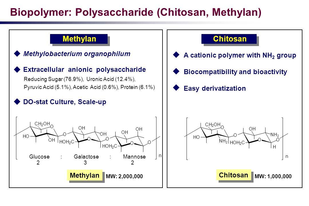 Biopolymer: Polysaccharide (Chitosan, Methylan)