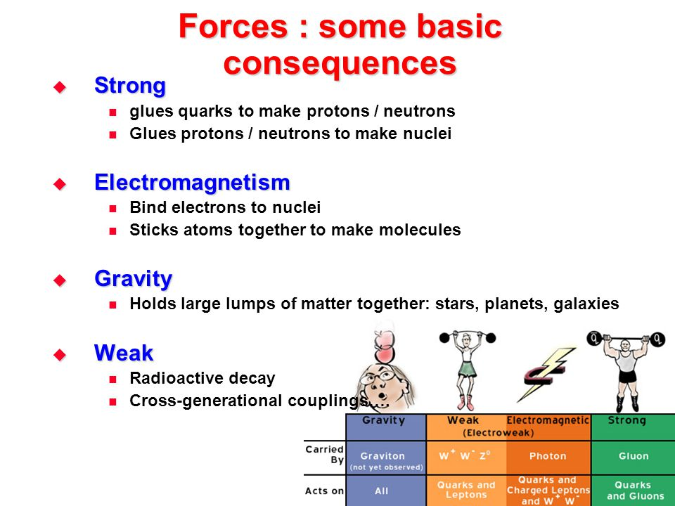 Forces : some basic consequences